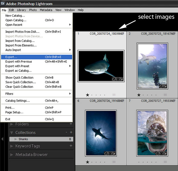 Now that the helper program is installed, we're going to go into Lightroom and use the export feature to export photos. To use the export function, you select the images you want to upload to SmugMug, and use the File>Export function.