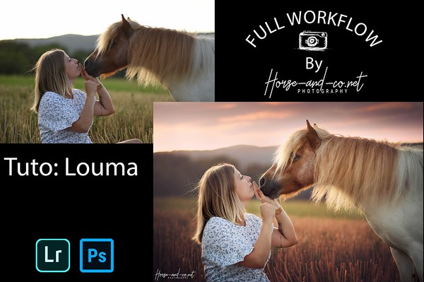 Tuto lightroom et photoshop photo équine