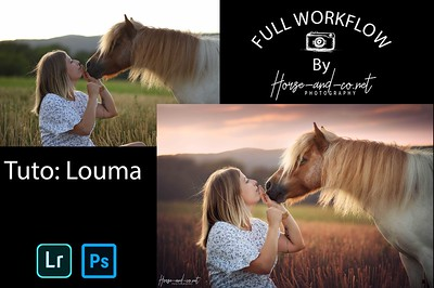 Tuto lightroom et photoshop photo équine