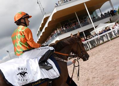 Lady of Course och Per-Anders Gråberg | Bro Park 160619 | Foto: Stefan Olsson / Svensk Galopp