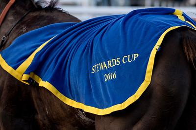 Stewards Cup | Bro Park 160802 | Foto: Elina Björklund / Svensk Galopp