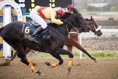 The Penny Horse och Christoffer Wallin (närmast) vinner knappt före Rossmos Secret Bro Park 160928 Foto: Magnus Östh / Svensk Galopp