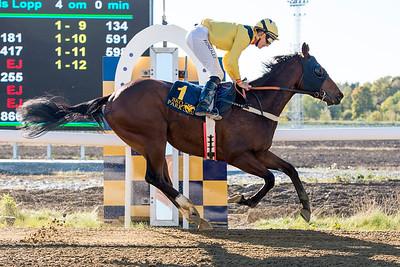 Pim vinner med Franco Gonzalez Rocha  Bro Park 161005 Foto: Elina Björklund / Svensk Galopp