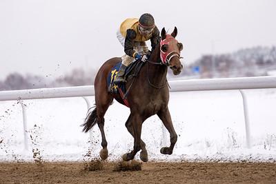 Greased Lightning vinner med Carlos Lopez  Bro Park 161211  Foto: Elina Björklund / Svensk Galopp