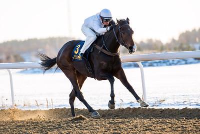 Tizian vinner med Per-Anders Gråberg Bro Park 161214  Foto: Elina Björklund / Svensk Galopp