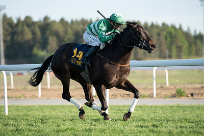 Blackstone vinner med Per-Anders Gråberg Bro Park 170529 Foto: Elina Björklund / Svensk Galopp