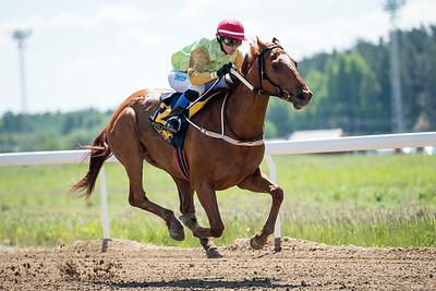 Zamir vinner med Ina Veronika Toverud Bro Park 170614 Foto: Elina Björklund / Svensk Galopp