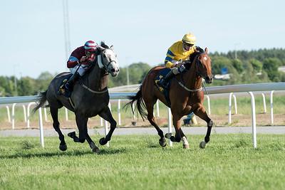 Tam O'Final vinner med Jacob Johansen Bro Park 170619  Foto: Elina Björklund / Svensk Galopp