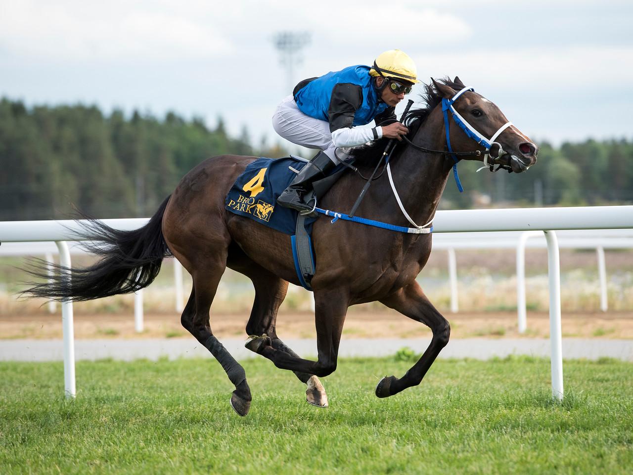 Appel Surreal vinner med Carlos Lopez  Bro Park 170724 Foto: Elina Björklund / Svensk Galopp