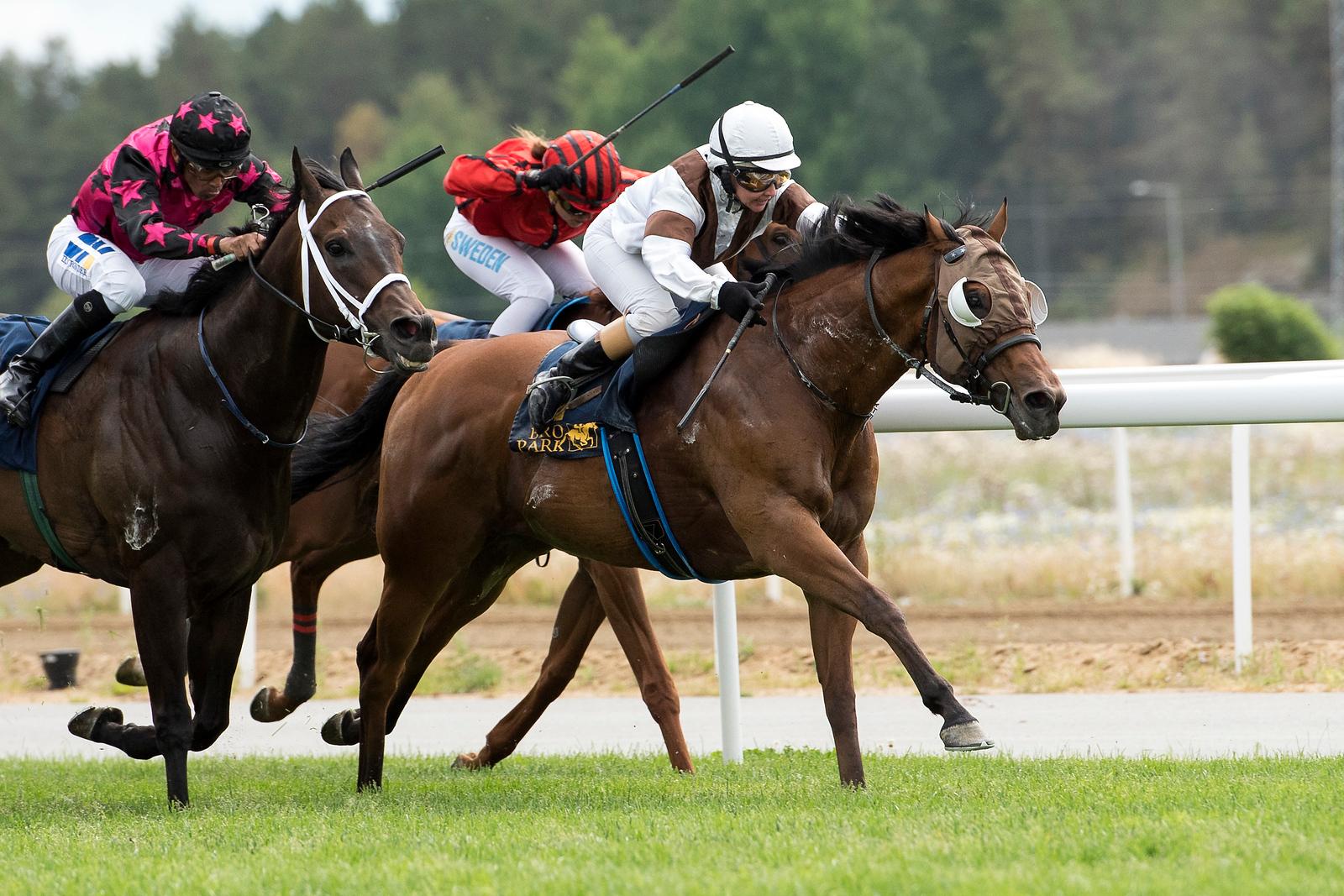 Freezone vinner med Rebecca Colldin Bro Park 170802 Foto: Elina Björklund / Svensk Galopp