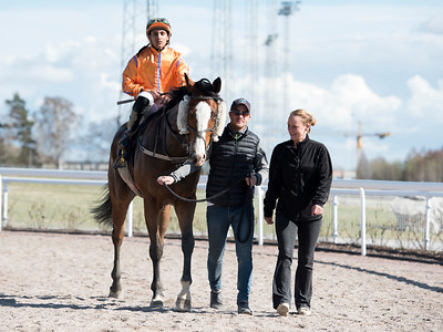 Josephine Kelly tar emot Cartouche och Franco Gonzales Rocha efter segern  Bro Park 180425 Foto: Elina Björklund / Svensk Galopp