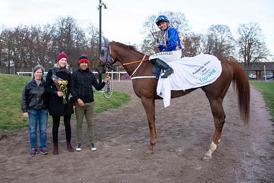 Cece Admirable i vinnarcirkeln  Bro Park 191103 Foto: Elina Björklund / Svensk Galopp