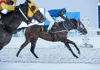 Arabianranta vinner med Alina Öhgren över Midnight Oil.  Bro Park 210110 Foto: Elina Björklund / Svensk Galopp