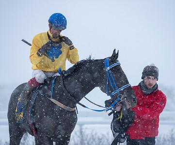 Falkor och Elione Chaves på väg in i vinnarcirkeln. Bro Park 210110 Foto: Elina Björklund / Svensk Galopp