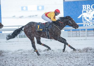 Freemanip vinner med Cornelia Hartsmar. Bro Park 210110 Foto: Elina Björklund / Svensk Galopp