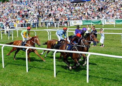 Hästarna i lopp 2 passerar publikplats | Gärdet 160606 | Foto: Stefan Olsson / Svensk Galopp