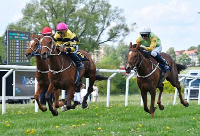 Al Muna vinner under Franco Gonzales Rocha  Gärdet / Nationaldagsgaloppen 170606 Foto: Stefan Olsson / Svensk Galopp