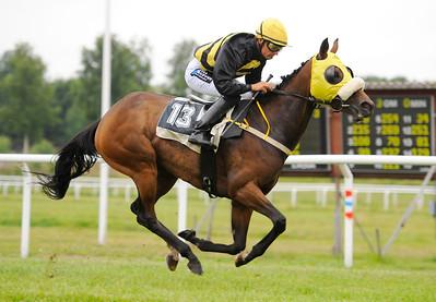 Golden Shine vinner med Per-Anders Gråberg | Göteborg 130728 |  Foto: Stefan Olsson / Svensk Galopp