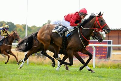 Golden Shine vinner med Josefin Landgren | Göteborg 140727 | Foto: Stefan Olsson / Svensk Galopp
