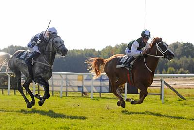 Choumoukqardabiyah och Shane Karlsson vinner före Arrtalao | Göteborg 140921 | Foto: Stefan Olsson / Svensk Galopp