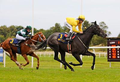 Gold Pursuit vinner under Shane Karlsson | Göteborg 150913 | Foto: Stefan Olsson / Svensk Galopp