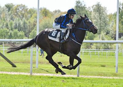 Speciale Di Giorno vinner med Shane Karlsson Göteborg 170521 Foto: Stefan Olsson / Svensk Galopp
