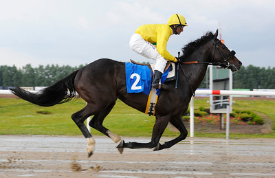 KVAL 1: Indian Hot | Jägersro 110702  Foto: Stefan Olsson / Svensk Galopp