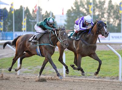 Sharm El Sheik och Ariel De Souza (t h) vinner före Sun Life | Jägersro 110716  Foto: Stefan Olsson / Svensk Galopp