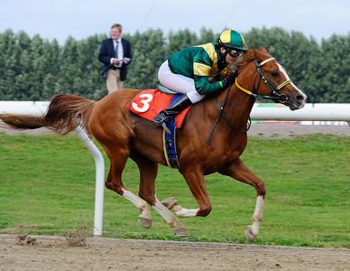 El Quattro vinner med Cathrine Weilby | Jägersro 110814  Foto: Stefan Olsson / Svensk Galopp
