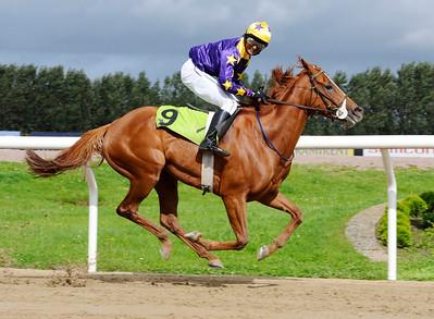 She's So Nice vinner med Sriram Pawar | Jägersro 110907  Foto: Stefan Olsson / Svensk Galopp