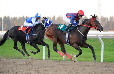 Pergite vinner med Valmir de Azeredo | Jägersro 110929 Foto: Stefan Olsson / Svensk Galopp