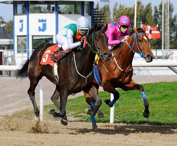 Milibloom och Manuel Martinez vinner före Ride for Roses | Jägersro 111005  Foto: Stefan Olsson / Svensk Galopp