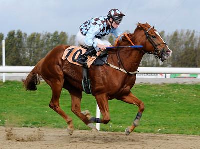 Beat Baby vinner med Oliver Wilson | Jägersro 111005  Foto: Stefan Olsson / Svensk Galopp