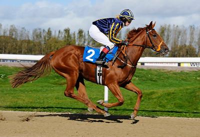 Kanzee Gold vinner med Nathalie Mortensen | Jägersro 111012 |  Foto: Stefan Olsson / Svensk Galopp