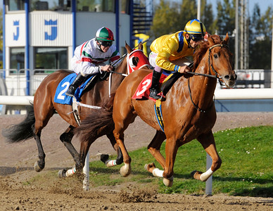 Lions Prospect vinner med Elione Chaves | Jägersro 111012 Foto: Stefan Olsson / Svensk Galopp