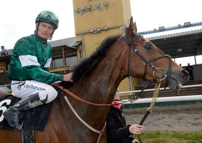 Freckenham Ted och Per-Anders Gråberg | Jägersro 120415 | Foto: Stefan Olsson / Svensk Galopp