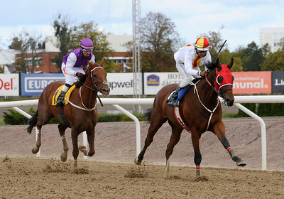 Seigneur Thunder och Naveen Lakshminarayan vinner före Quick Diamond | Jägersro 120919 |  Foto: Stefan Olsson / Svensk Galopp