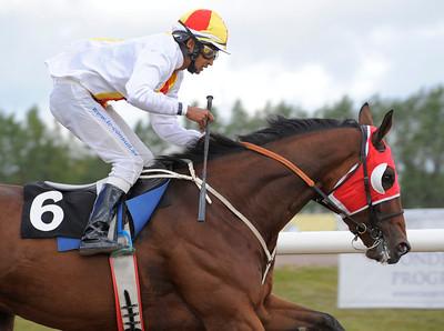Seigneur Thunder vinner med Naveen Lakshminarayan | Jägersro 120919 |  Foto: Stefan Olsson / Svensk Galopp