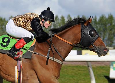 Otama Toyboy vinner med Jonna Gustafsson | Jägersro 121010 |  Foto: Stefan Olsson / Svensk Galopp