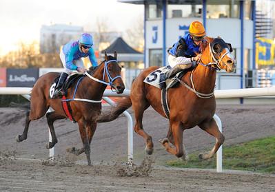 Mr Fong och Marcos Robaldo vinner före Tennessee Soul  | Jägersro 121111 | Foto: Stefan Olsson / Svensk Galopp