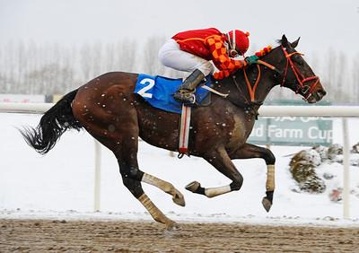 El Magico vinner med Manuel Martinez  | Jägersro 121205 | Foto: Stefan Olsson / Svensk Galopp