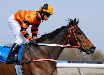 Moe Green vinner med Valmir De Azeredo   Jägersro 130410   Foto: Stefan Olsson / Svensk Galopp