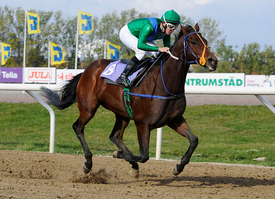 Nightjar vinner med Iago Serry | Jägersro 131009 | Foto: Stefan Olsson / Svensk Galopp