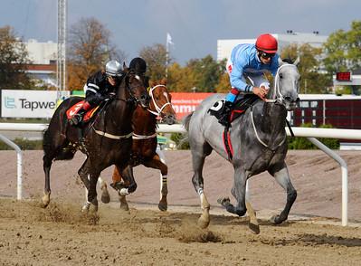 Sir Freddie och Elione Chaves vinner före Timeless Stride och Spykes Bay | Jägersro 131009 | Foto: Stefan Olsson / Svensk Galopp