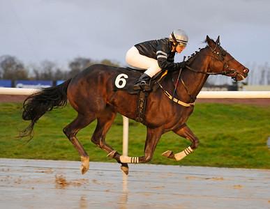 Timeless Stride vinner med Madeleine Smith | Jägersro 131110 | Foto: Stefan Olsson / Svensk Galopp