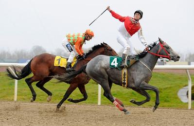 Buzzbird och Iago Serry vinner före Duke Derby | Jägersro 131127 | Foto: Stefan Olsson / Svensk Galopp