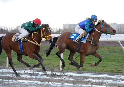 W Catchcash och Anna Pilroth vinner före Lee Loo Minai | Jägersro 131204 | Foto: Stefan Olsson / Svensk Galopp