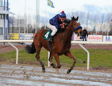 Half Tiger vinner med Max W Friberg | Jägersro 131204 | Foto: Stefan Olsson / Svensk Galopp
