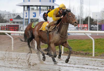 Art Law och Oliver Wilson vinner före Awesome Delight. | Jägersro 131204 | Foto: Stefan Olsson / Svensk Galopp