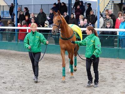Riksgaloppören Plaisir Partage tillsammans med Gisela Jardby och Chris Nilsson  | Jägersro 140406 | Foto: Stefan Olsson / Svensk Galopp